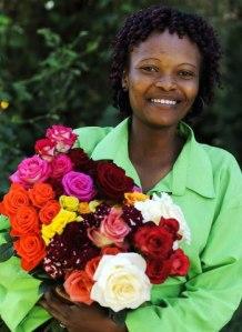 Fairtrade rosor Alla Hjärtans Dag