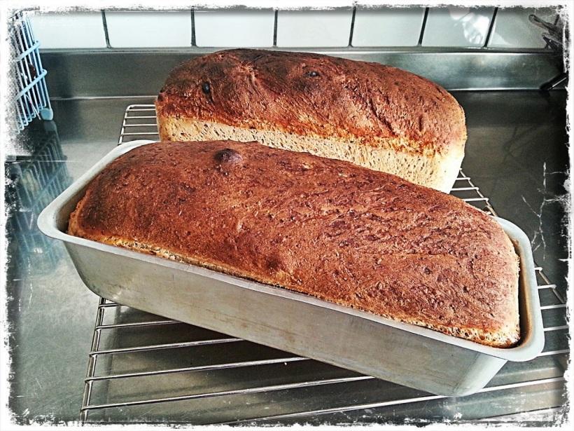 Fair Trade blogg baka bröd ekologiskt